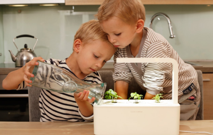 click and grow, kid watering plant